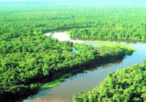 amazonia-linda.jpg.640x340_q85_crop