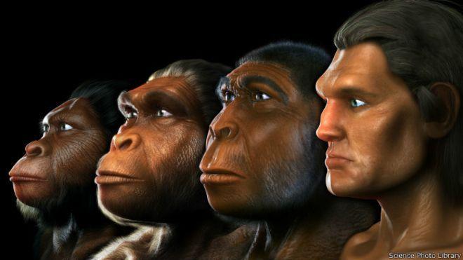 humanos_evolucion_sciencephotolibrary