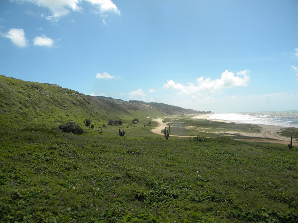 A área é privilegiada, com praias cercadas por muito verde.