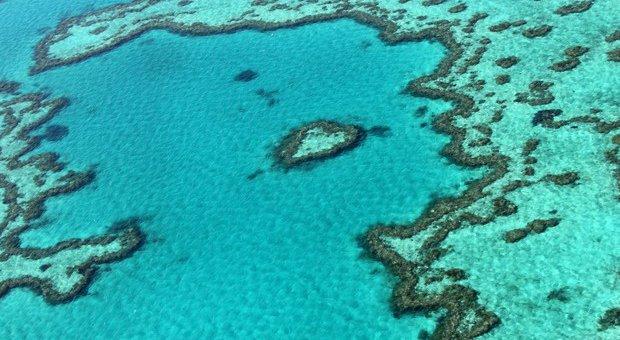 australia-corais.jpg.640x340_q85_crop