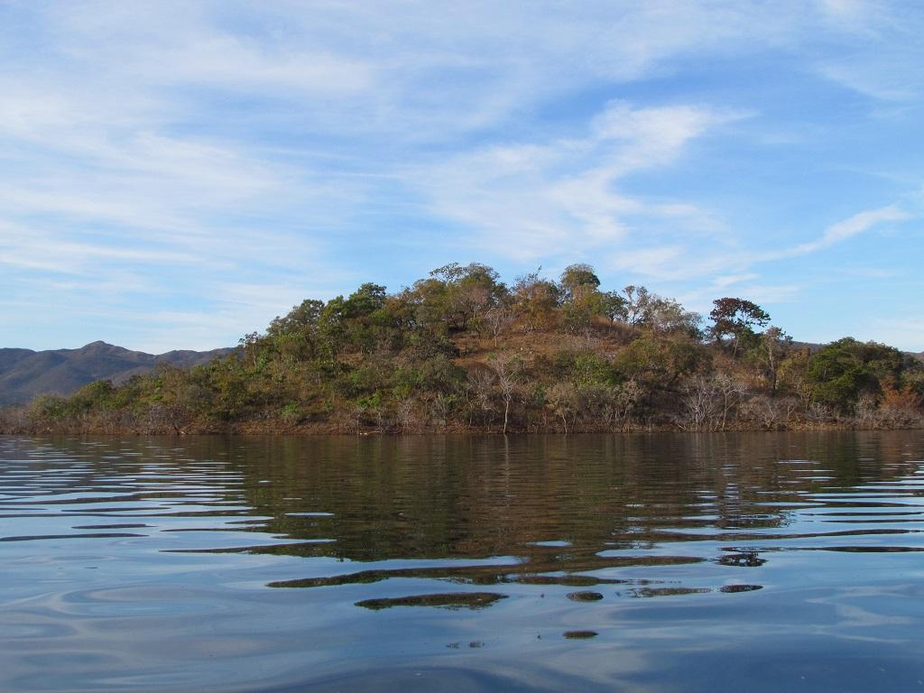 Ilhas do Lago de Serra da Mesa são um laboratório natural para pesquisadores Créditos: Divulgação