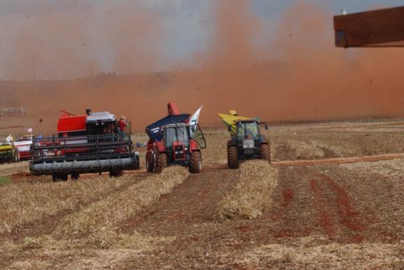 Este ano, o Brasil deve impulsionar os grandes ganhos na produção global de grãos, ao lado da vizinha ArgentinaArquivo/Agência Brasil