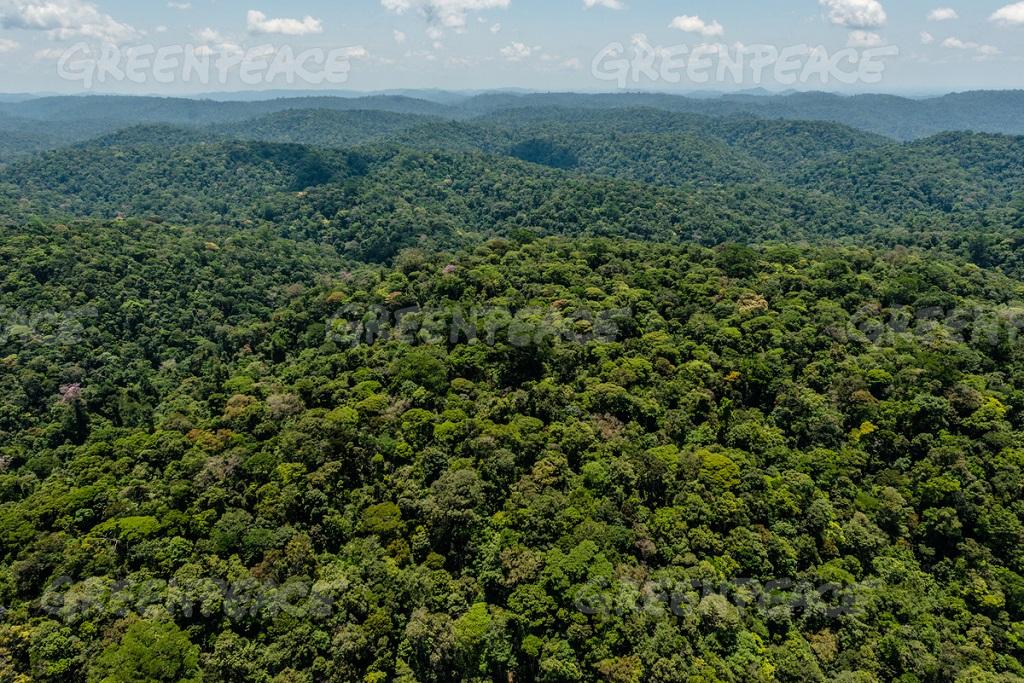 7 milhões de hectares na divisa entre o sul e o sudoeste do Amapá com o nordeste do Pará. Nove áreas protegidas estão sobrepostas à Renca: sete Unidades de Conservação e duas Terras Indígenas., área rica em ouro e outros minérios de 4, Reserva Nacional de Cobre e seus Associados (Renca)