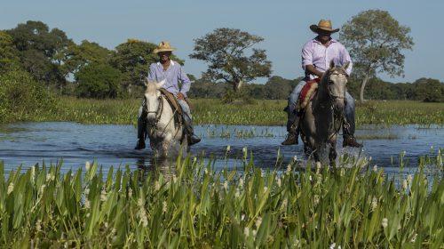 Expedição WWF-Brasil - Pantanal