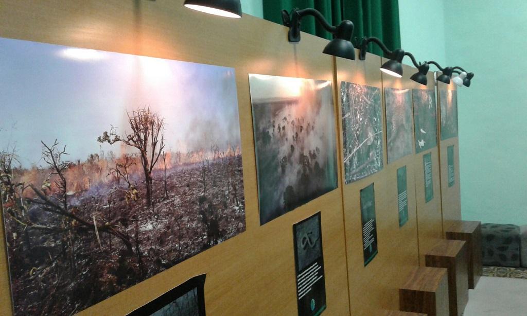 Exposição traz imagens que impactam os visitantes  Divulgação / Estação Natureza Pantanal
