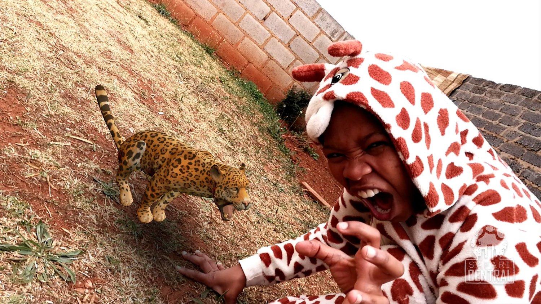 A melhor foto com a onça-pintada brasileira veio da África do Sul.  © Unathi Mamane / Safari Central