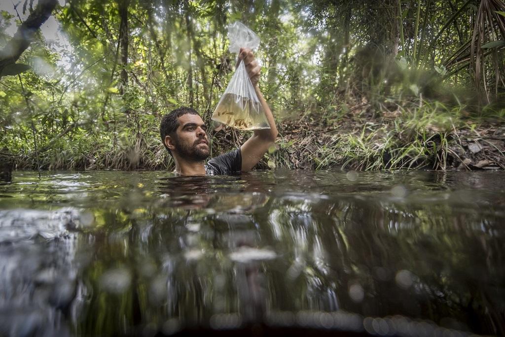 Assunto: Biólogos em trabalho de pesquisa de peixes na Reserva Natural Serra do Tombador - RPPN da Fundação Grupo Boticário Informação Adicional: Inserida na Reserva da Biosfera do Cerrado Goyaz Local: Cavalcante - GO Data: 11/2016 Autor: Andre Dib